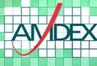 Amdex Development